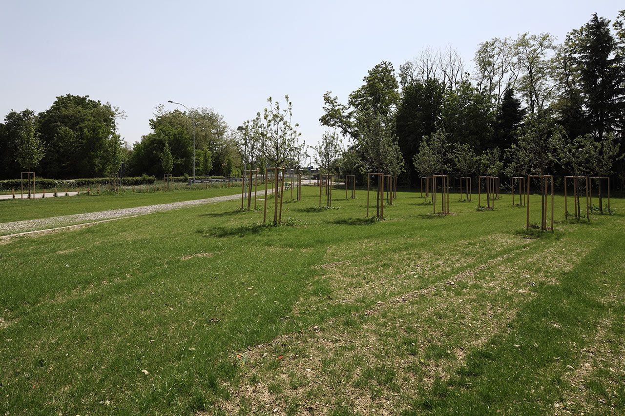 Parco-attrezzato-periurbano-di-Cornaredo-4-1280x853.jpg
