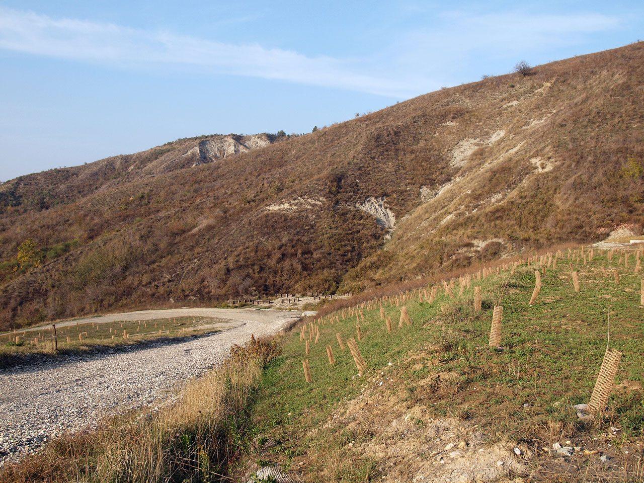 Ripristino-ambientale-Deposito-terre-e-rocce-da-scavo-Cà-Cirenaica-2-1280x960.jpg